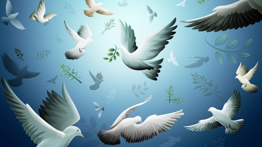 Please – Peace – Piece : สันติสุข หรือแหลกสลาย
