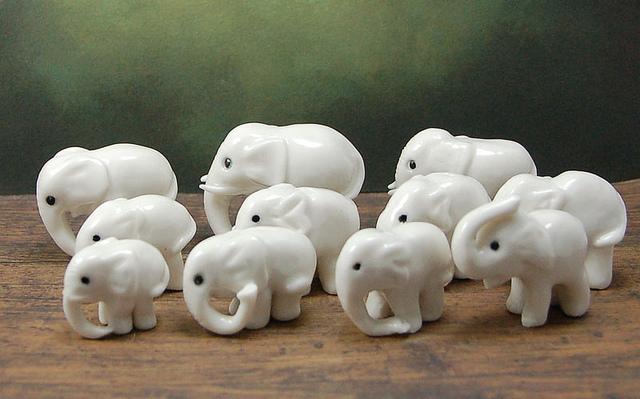 Eleven – Elephant : ช้าง 11 เชือก