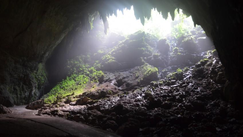 Crave – Cave : ปรารถนา จะอยู่ ถ้ำ