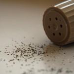 เรียนภาษาอังกฤษฟรี | Pepper – Paper  ต่างกันอย่างไร