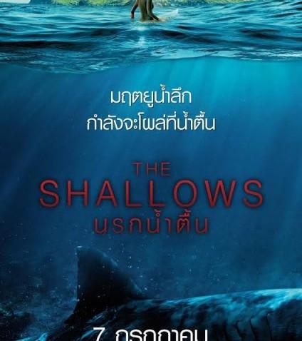รีวิวหนัง The Shallows นรกน้ำตื้น