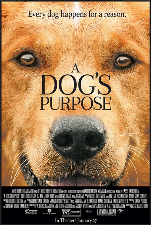 รีวิวหนัง Dog's Purpose หมา เป้าหมายและเด็กชายของผม